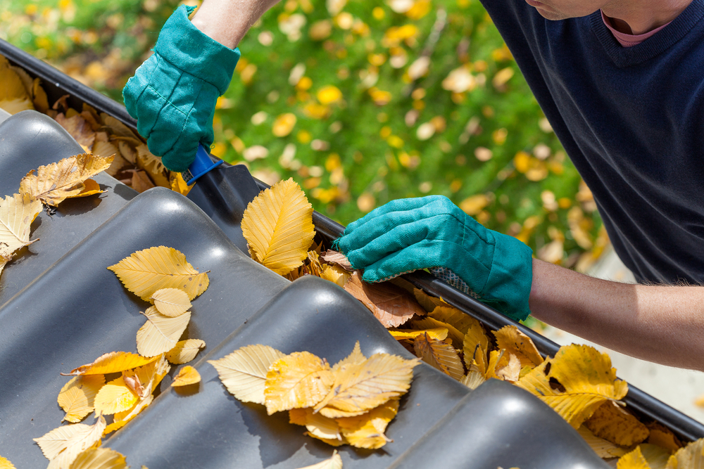 Man with green gloves cleans orange leaves out of the eavestroughs